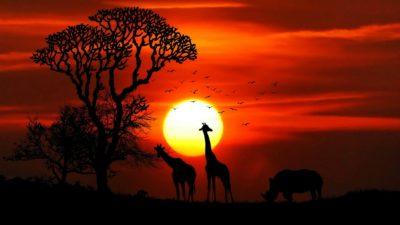 Adventure Safari at the land of Maasai